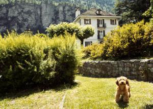 Bed and Breakfast Villa Nante - Accommodation - Varzo
