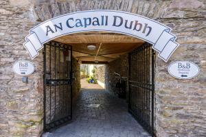 An Capall Dubh B&B Dingle