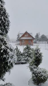 Chata pod Sniezka