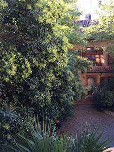 T2 Duplex calme hypercentre, petit déjeuner offert - Hotel - Toulouse