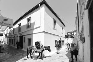 Mastoris Mansion(Hidra)