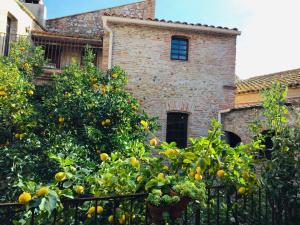 Accommodation in Torreilles