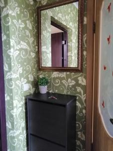 obrázek - Apartment on Malaya Lesnaya