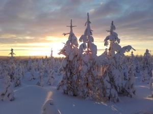 Ollilan Lomamajat, Dovolenkové domy  Kuusamo - big - 187