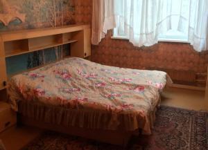Дом на Новоземельской 38 - Novaya Derevnya
