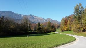 Kamnik Alps Cottage - CYCLING & TREKKING PLACE!