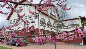 Гостиницы Валуек