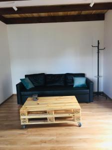 Skarb Sołtysa - apartament z widokiem