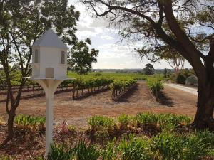 'In The Vines' Guest Cottage, Barossa Valley