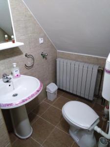 Apartment Aleksandra, Ferienwohnungen  Bajina Bašta - big - 21