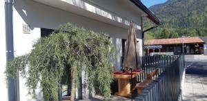 Vila Mojca Apartments Jasna & Jelka