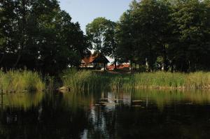 Kuhnort - Dziewiszewo