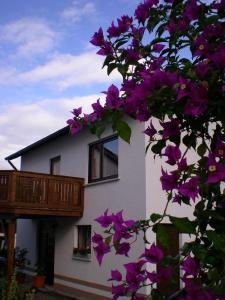Casa-Maria - Ehrenberg