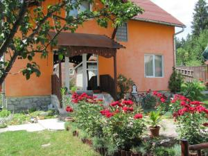 Accommodation in Poiana Brasov