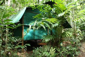 Daintree Crocodylus Village - Cow Bay