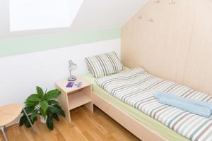 Apartma Murania