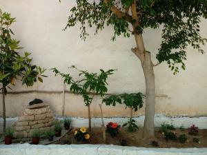 Hotel Poulakis Agistri Greece