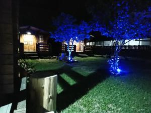 Holiday Park NewAfon, Guest houses  Novy Afon - big - 36