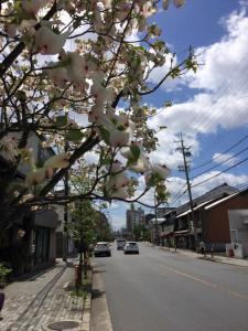 Suzume-An, Kúriák  Kiotó - big - 71