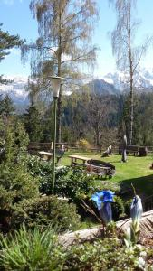 Guesthouse Planinski Dom Majerhold