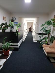Minutka Hostel - Argun
