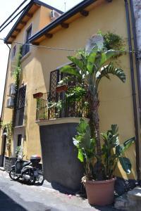Borgo City Center - AbcAlberghi.com