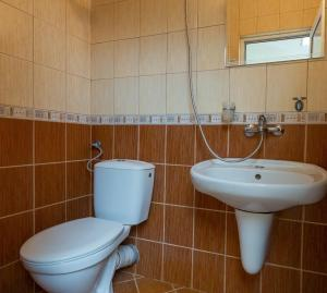 Comfortable 1bedroom apartment with kitchen in Dafinka QQ