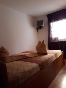 Hostel Premium Travel
