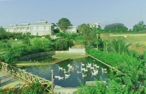 Fazlani Natures Nest wellness Centre & Spa, Rezorty  Lonavala - big - 73