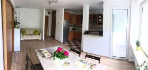 Big Sunny Apartment
