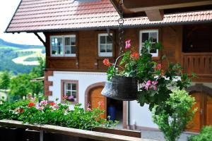 Riehle Hof - Biberach bei Offenburg