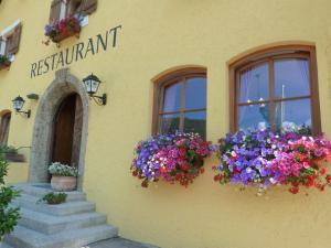 Hotel Restaurant Alpenglück, Affittacamere  Weißbach - big - 23
