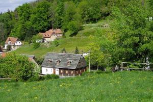 Holiday Home Großschönau - DMG081007-F - Hinterer Viehbig