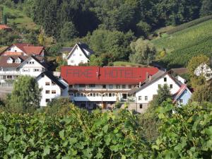 Hotel Faxe Schwarzwälder Hof - Kappelrodeck