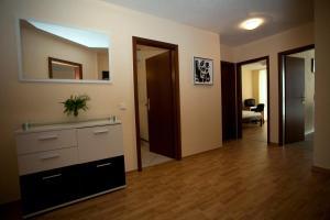 Apartments Hotel Petersburg, Appartamenti  Düsseldorf - big - 4
