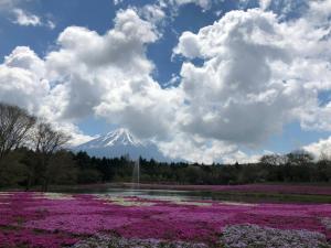 SAMURAI Guest House, Affittacamere  Fujiyoshida - big - 18