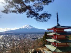 SAMURAI Guest House, Vendégházak  Fudzsijosida - big - 16
