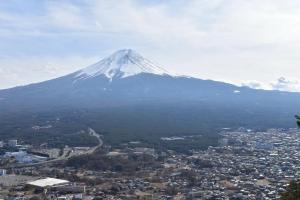 SAMURAI Guest House, Vendégházak  Fudzsijosida - big - 15