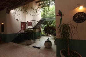 Casa Quetzal Boutique Hotel, Hotels  Valladolid - big - 56