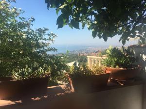 Via Casalrosato - Hotel - Valverde
