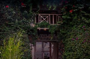 Kuriftu Resort and Spa (23 of 39)