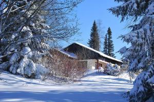 Holiday village Reichenbach Nesselwang-Reichenbach - DAL01520-FYC - Kressen