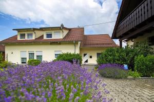Holiday flat Owingen-Billafingen - DBE02031-DYE - Billafingen