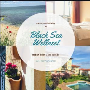 obrázek - Black Sea Wellnest