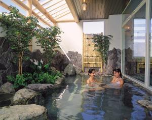 Hotel Yuzawa Yuzawa Denkiya - Yuzawa