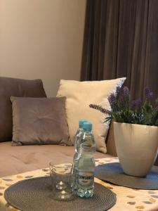 Apartament Beauty