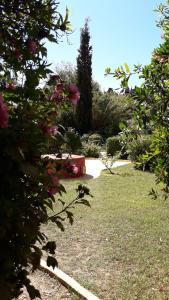 Villa De Loulia (2 of 58)