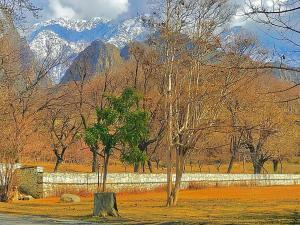 Gahiret Castle, Rezorty  Chitral - big - 136
