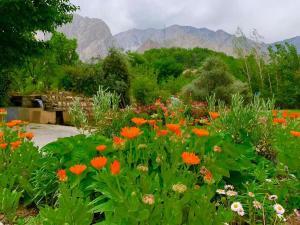Gahiret Castle, Rezorty  Chitral - big - 11