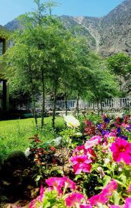 Gahiret Castle, Rezorty  Chitral - big - 119